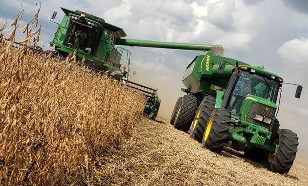 Soja, trigo y maíz: caen los costos, pero también los márgenes
