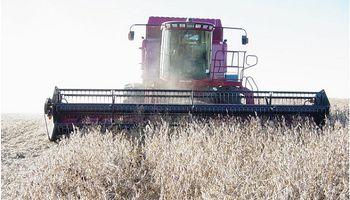 Cómo impactará la sequía en el saldo exportable del país
