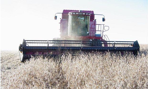 El campo tiene  granos de la cosecha vieja por unos US$4700 millones.