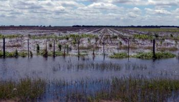 Inundaciones: están en riesgo unos u$s 5000 millones