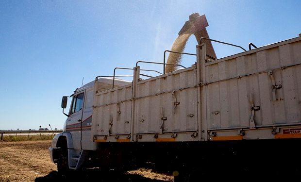 Uruguay: denuncian robo de granos y piden pesar los camiones antes de salir del campo