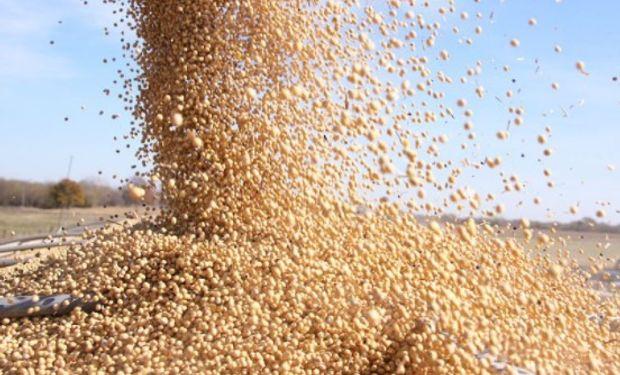 Los futuros de harina de soja avanzaron más de US$4, traccionando al poroto.