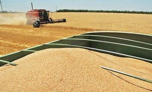 Hubo aumentos en las estimaciones de cosecha para Brasil.