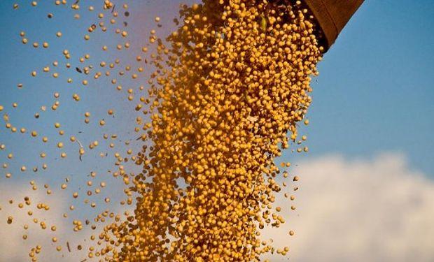 Extrusoras de soja quieren ser tratadas diferente.