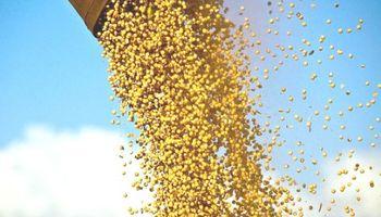 Agroindustria incautó más de 1.400 toneladas de granos