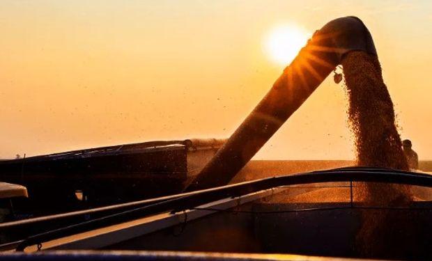 Se esperan 116,2 millones de toneladas de soja.
