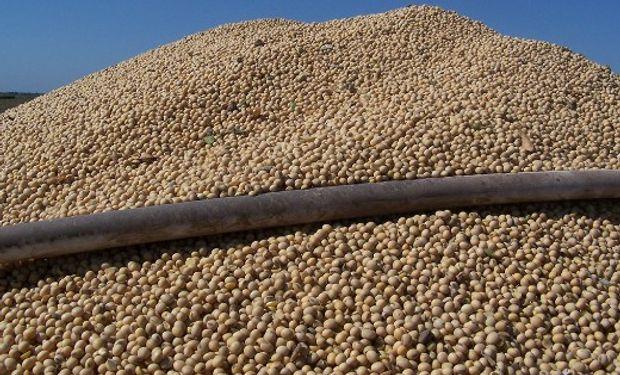Por la soja pagaron hasta $4.200 la tonelada en Rosario.