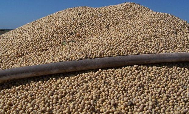 Producción Sudamericana presiona el mercado a la baja.