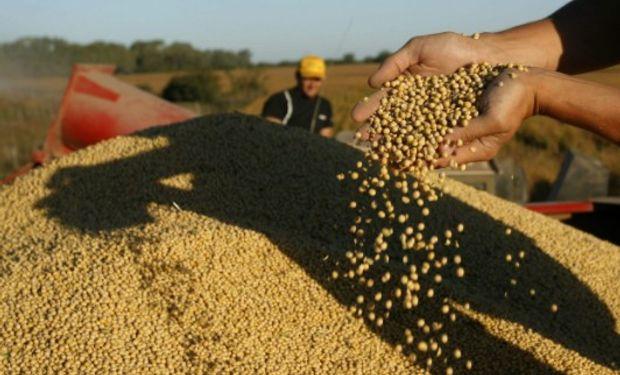 CBOT: leves cambios para los granos