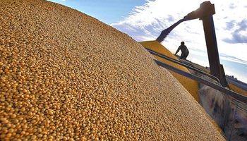 Soja: cosecha es la segunda mejor de los últimos 17 años