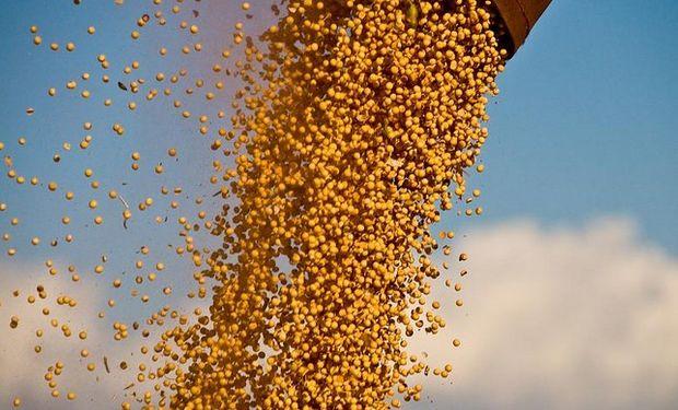 Por la soja disponible, las fábricas pagaron $2400 no descartando mejorar dicho valor por lote hasta los $2420.