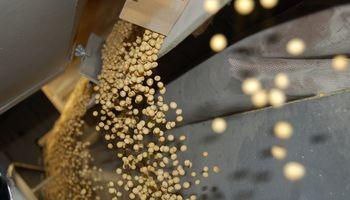 Se inhabilitaron 21 usuarios en procesadoras de granos de Córdoba