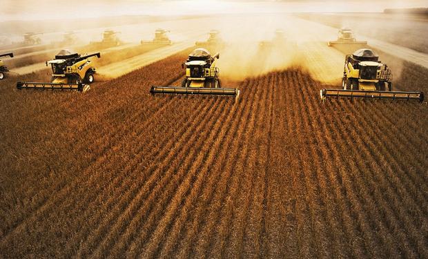 Campaña de soja 2013/14 en Brasil llegaría a 88,4 millones de toneladas