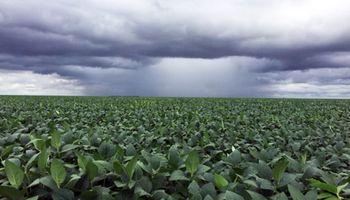 Alerta por tormentas y lluvias intensas en el centro-norte del país