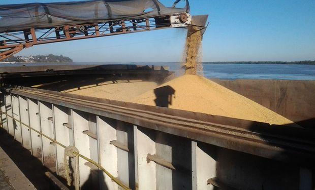 La interrupción del flujo exportador de granos –en plena inicio de la cosecha brasileña de soja– impulsó alzas en el mercado internacional de la oleaginosa.
