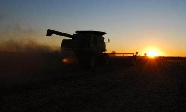 Continúa la presión sobre los futuros de soja.