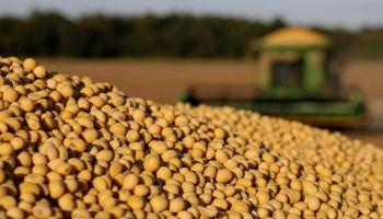 Chicago: máximo de 5 años para el trigo, 2 años para la soja y 8 meses y medio para el maíz