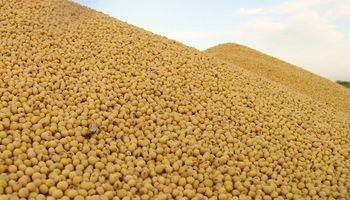 La soja no detiene su caída: tocó mínimos desde octubre