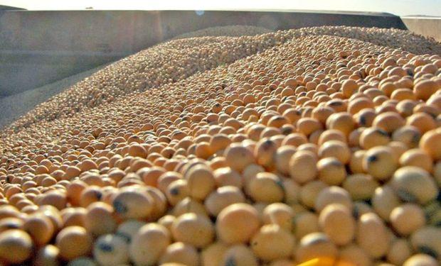 De nuevo, fuertes bajas para el precio de la soja