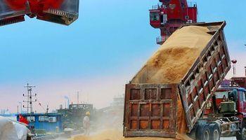 China frena compras de soja a Estados Unidos y vira la demanda a Sudamérica