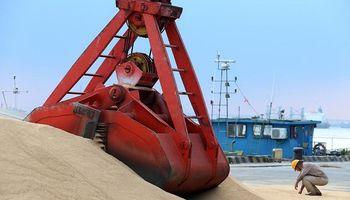 Fiebre porcina y guerra comercial: volvió a caer la importación de soja desde China