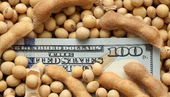 Extienden a cinco años el plazo para liquidar divisas por exportaciones del agro