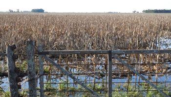 Se dejarían de sembrar 636 mil hectáreas por el nuevo esquema de retenciones