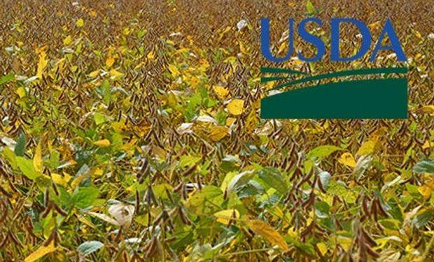 El USDA publicó hoy tres informes relevantes.