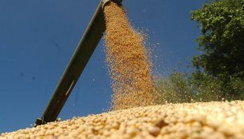 La participación del Estado en la renta agrícola bajó por movimientos del dólar