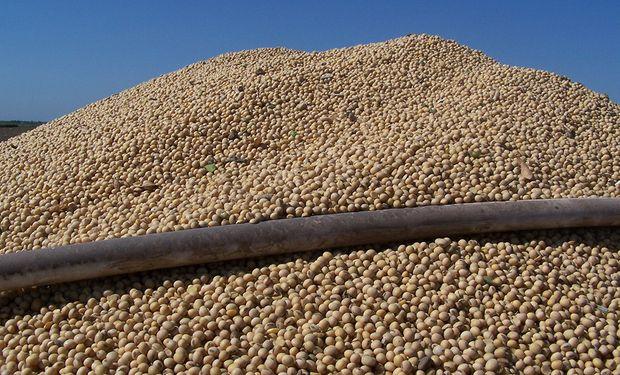Por la soja fábrica pagaron abiertamente $4.300.