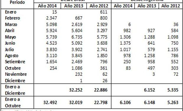 Exportaciones de poroto de soja de Brasil y Argentina con destino a China. Últimos tres años (En millones de Toneladas) Fuente: BCR