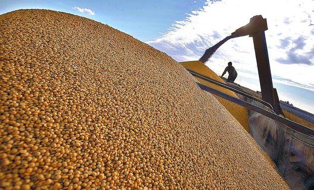 Aún quedarían en manos de productores 19,7 millones de toneladas de soja de la anterior campaña