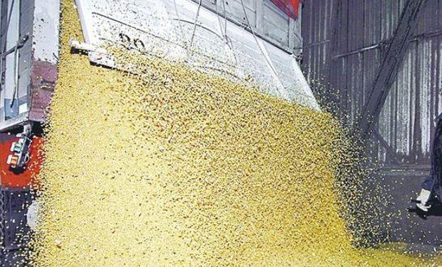 SOJA. Un 92% de la cosecha se mueve en camión.