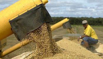 Importantes demoras en las ventas a futuro de soja en Brasil