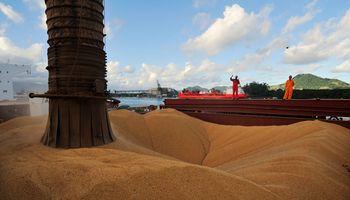 En Brasil prevén una mayor competencia con la soja argentina