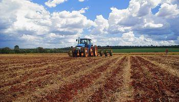 Brasil proyecta sembrar 3% más de soja