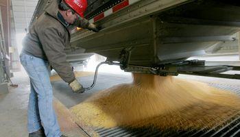 China: compras de soja podrían caer por primera vez en diez años