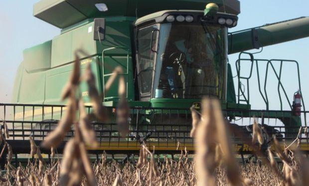 La consultora estimó el promedio de rendimiento de la oleaginosa en 3,05 toneladas por hectárea.