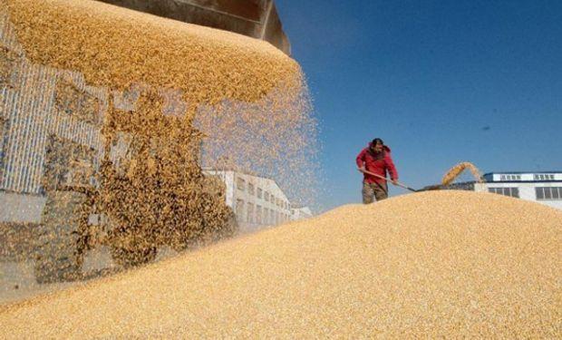 Farmers enfrentan problemas de almacenamiento.