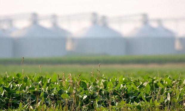 Procesamiento de soja detenido en el Medio Oeste de EE.UU.