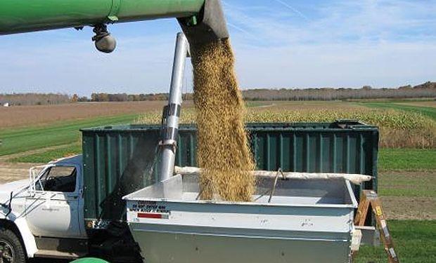 Pasando al plano local, los premios por soja entrega inmediata bajaron sustancialmente, ya que la cosecha está muy cerca.