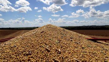 Soja, trigo y maíz: en Chicago, los fondos apuestan a un fuerte recorte en los stocks