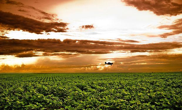 El tipo de cambio y los impuestos preocupan a los empresarios del agro