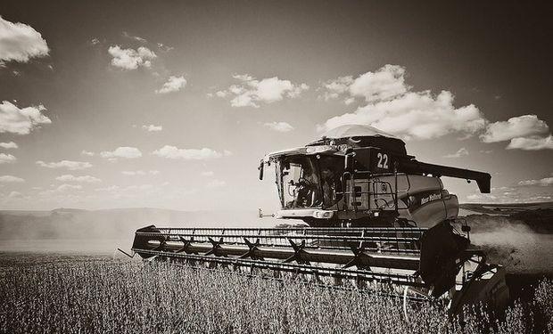 La proyección ubica el poder de compra de la soja en un nivel prácticamente igual al del período 1999/2001.