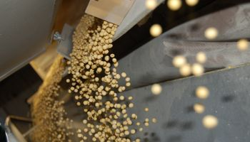 Bolsa de granos de Chaco se suma a la red de precios