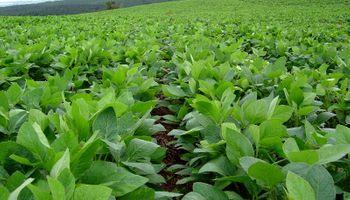 CASEM adhiere a la resolución 140/16 de Agroindustria