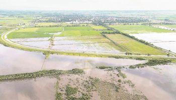 Por el clima, la cosecha de soja sería menor a 50 M de toneladas