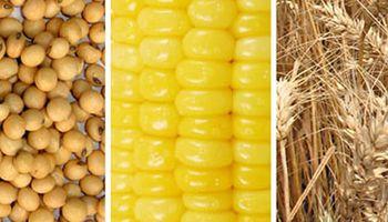 Claro saldo positivo para los principales commodities agrícolas