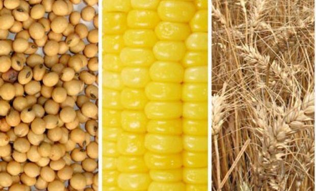 CBOT: soja, maíz y trigo en terreno negativo
