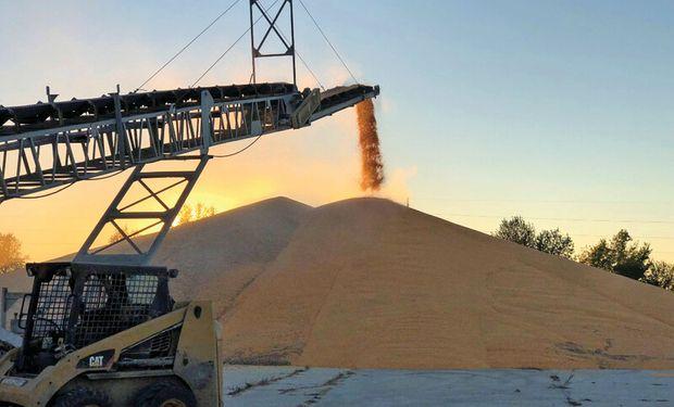 Precio de la soja: los fondos apuestan a un recorte del 23,8 % en los stocks finales de Estados Unidos